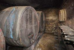 1anthony_thevenet_grandpas_foudres_bottles