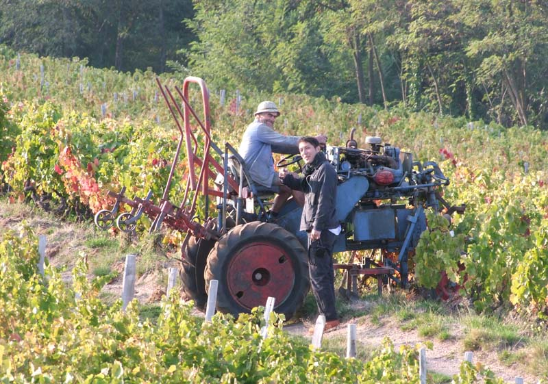 1michel_guignier_moulin-a-vent_straddle_tractor_aaron