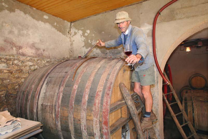 1michel_guignier_vauxrenard_foudre_wine2014