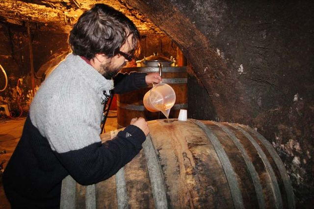 1biodynamics501_topping_up_barrel