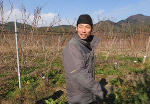 1beau_paysage_eishi_okamoto_vineyard