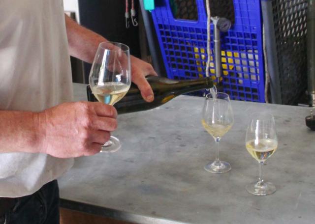 1nicolas_renard_facility_pouring_wine