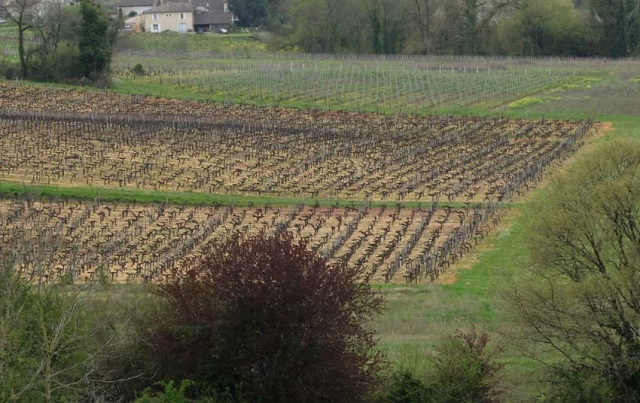 1herbicides_crowded_prison_fronsac
