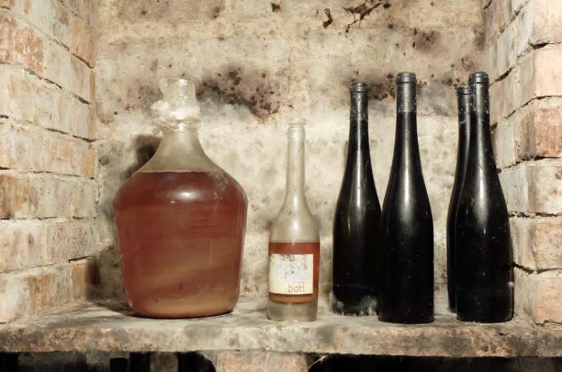1judit_bodo_bott_pince_cellar_bottles