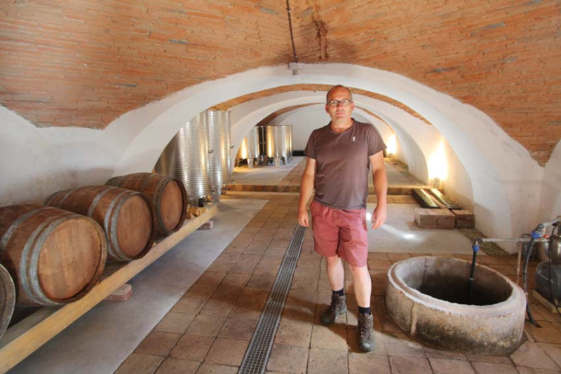 1alkonyi_laszlo_wine-farm_cellar