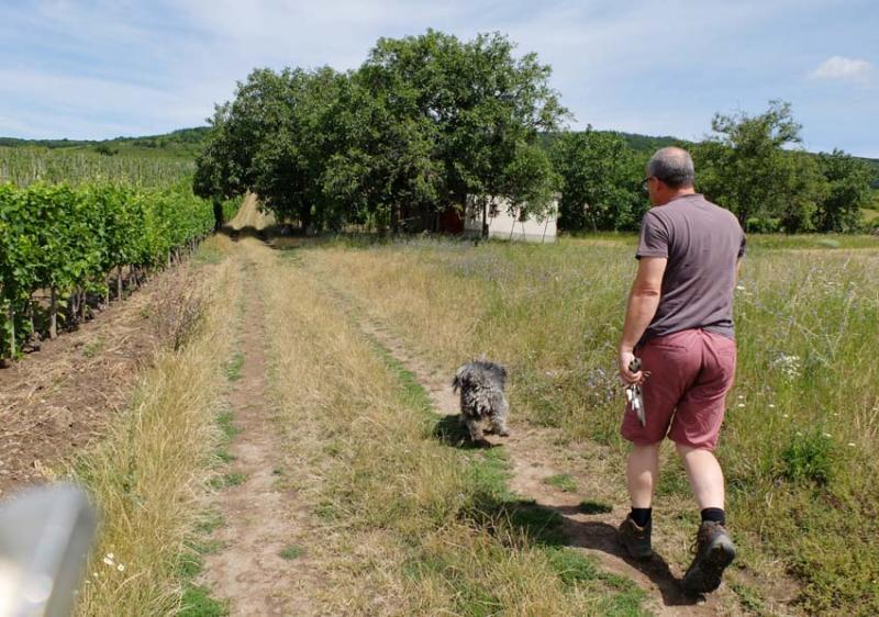 1alkonyi_laszlo_kalaka_walking_to_parcels