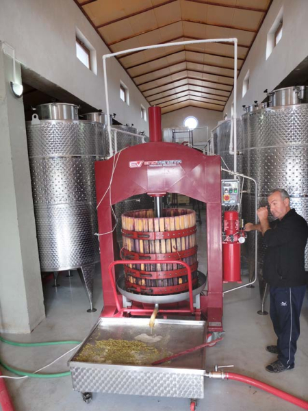 1van_ardi_winery_basket_press
