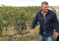 1van_ardi_winery_armenia_areni_gagyk