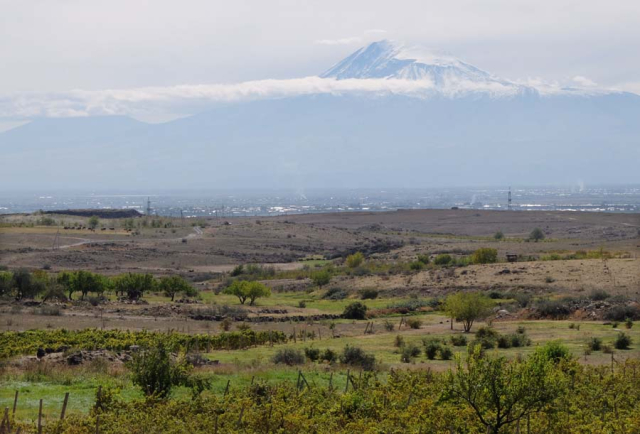 1armenia_wine_factory_ararat_vineyards