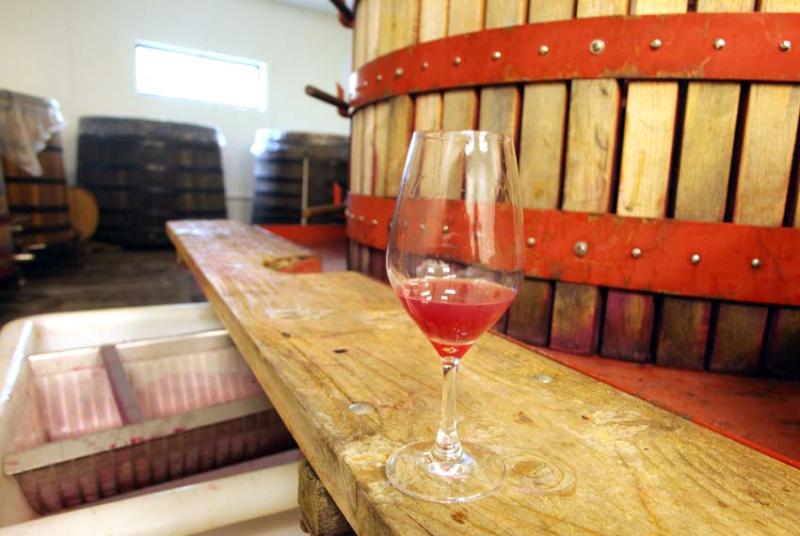 1nicolas_vauthier_magic_color_wine