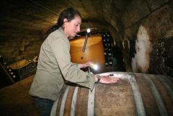 1noella_morantin_checking_barrels_sauvignon