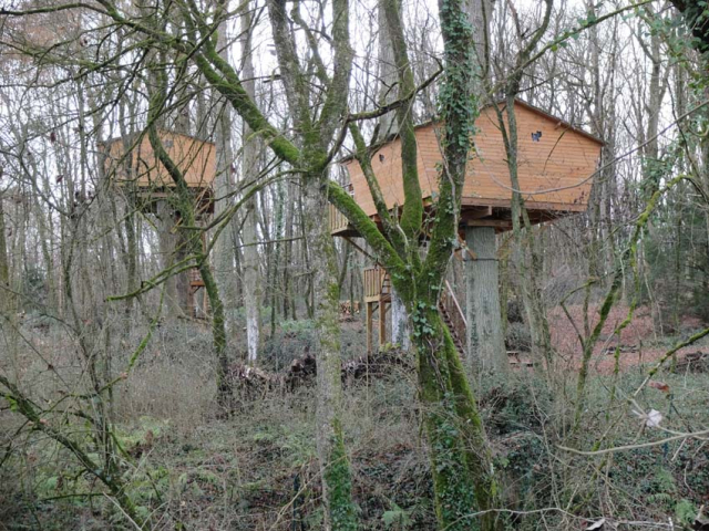 1cabin_in_the_trees_loire