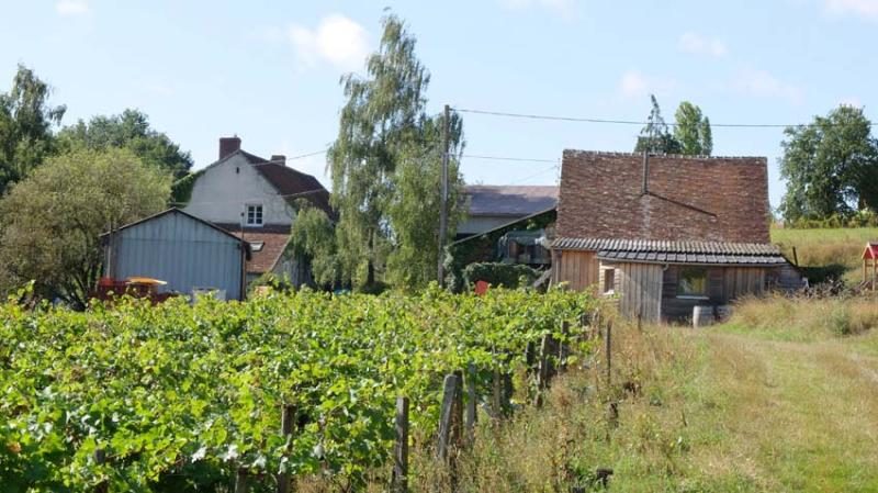 1maisons_brulees_parcel_below_farm1