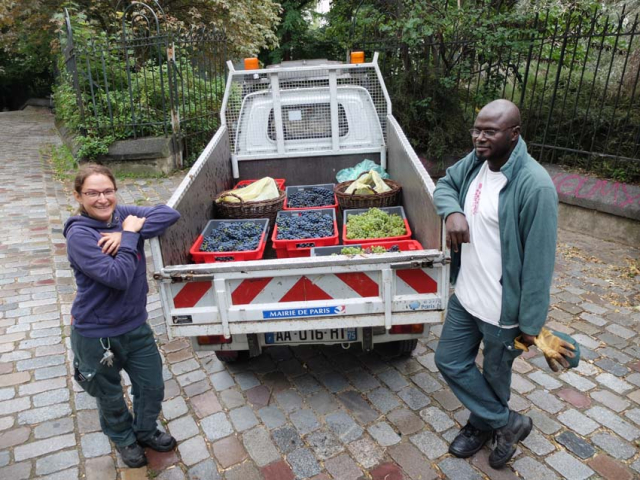 1paris_belleville_harvest_full_load