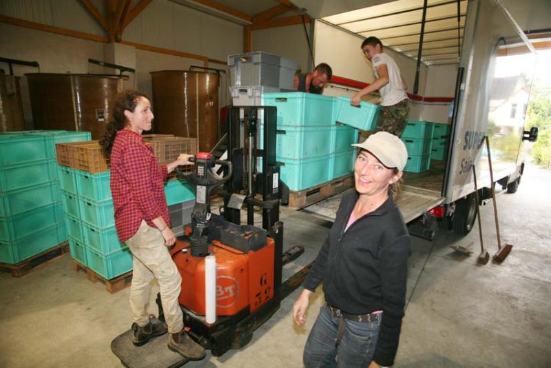 1noella_morantin_unloading_sauvignon