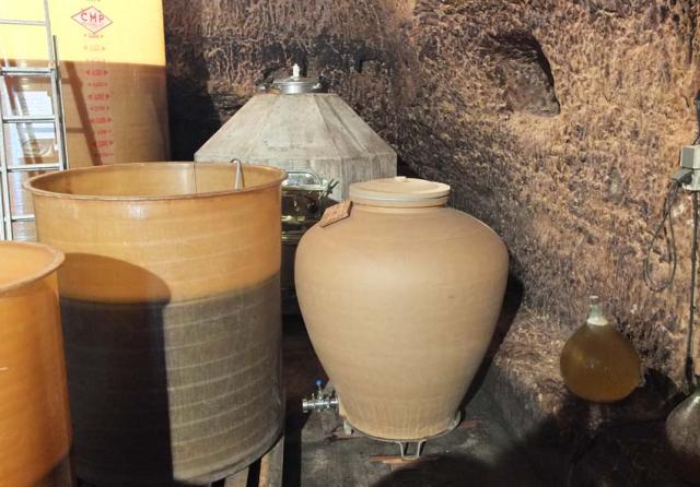 1frantz_saumon_egg_amphora