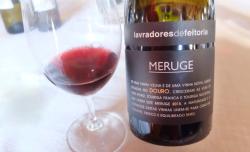 1douro_lavradores_meruge_red2015