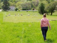 1julien_pineau_juliette_going_to_the_sheep