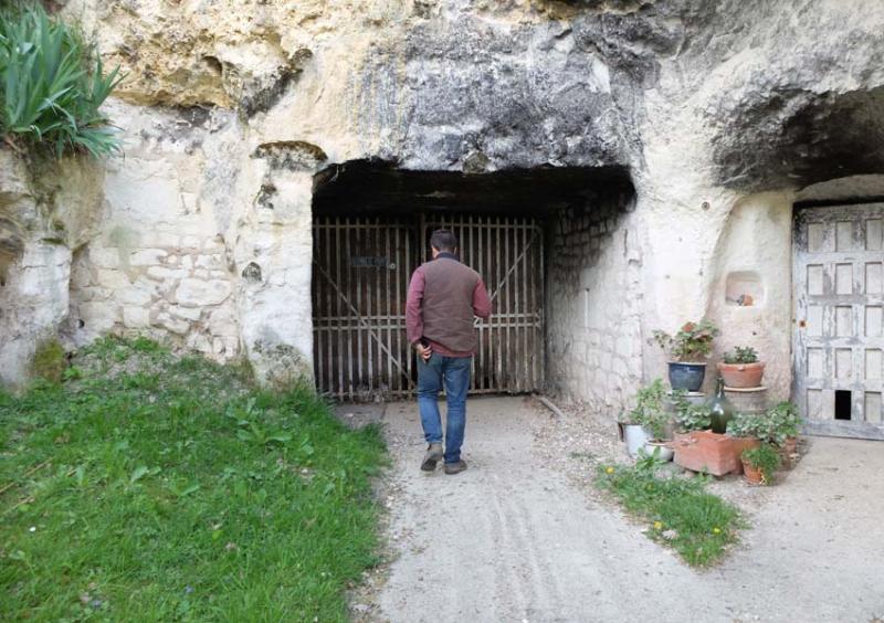 1julien_pineau_cellar_walking