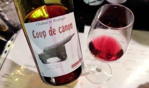 1poison_davril_anne_paillet_coup_de_canon