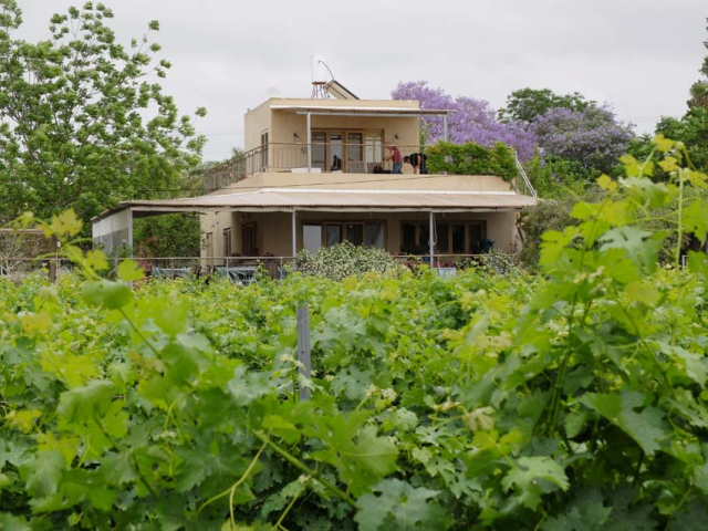1mettler_winery_house_vineyard