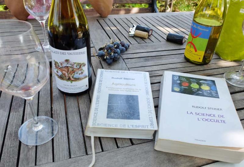 1charmasson_rudolf_steiner_books
