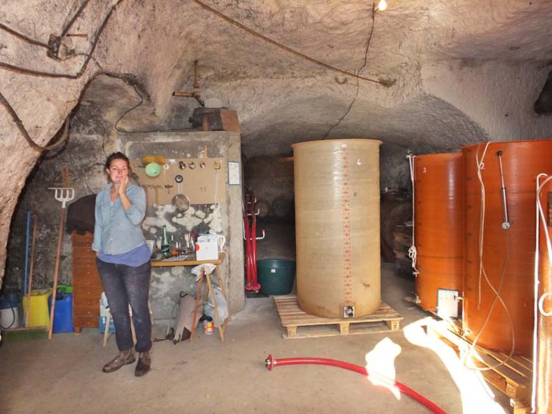 1lisanne_cellar_tanks