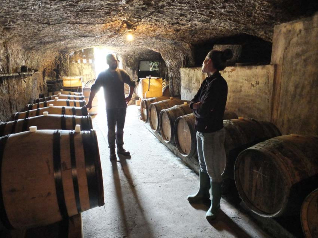 1anouk_paul_chatting_in_cellar