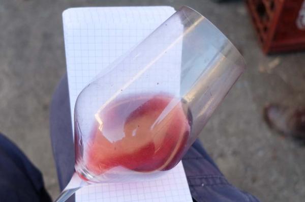 Wine Tasting, Vineyards, in France: Jérôme Lambert (Loire)