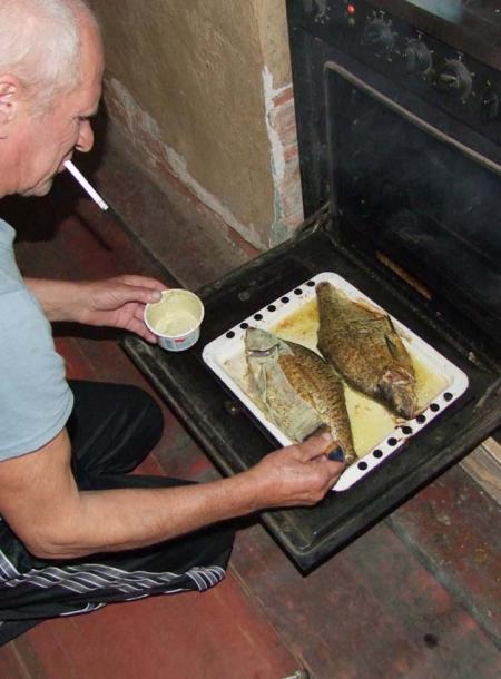 1mushrooms_river_fish