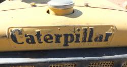 1p_martin_ray_caterpillars1