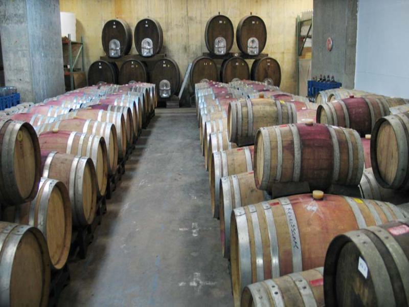 1renaissance2006_cellar_barrels