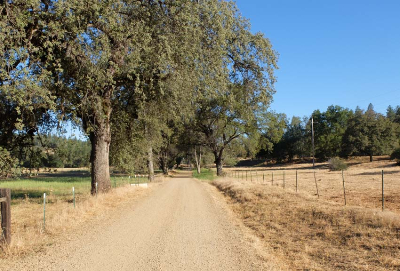 1frenchtown_dirt_road