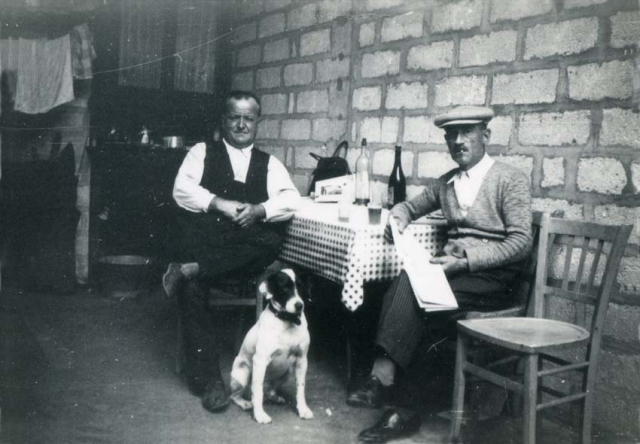 1wine_scenes_kitchen_with_dog1930