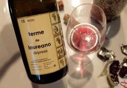 1penitentes_terme_de_laureano