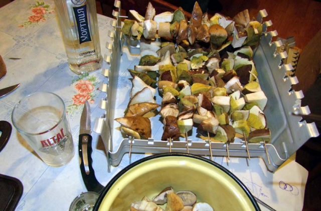 1mushrooms_slice_drying