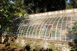 1carole_kohler_greenhouse