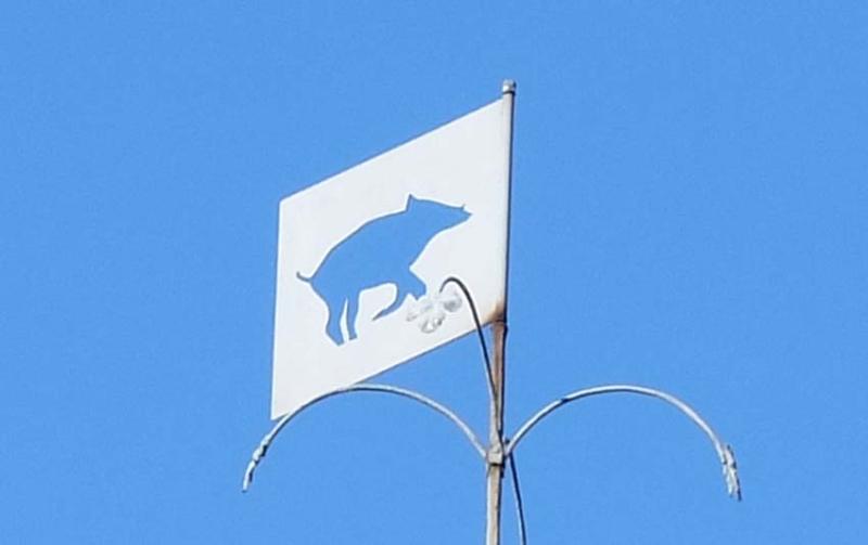 1carole_kohler_brice_wildboar_flag