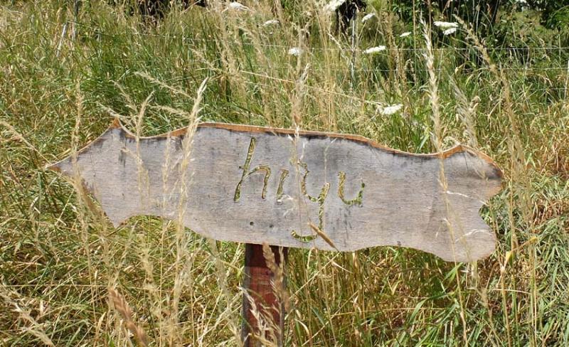 1hiyu_wine_sign