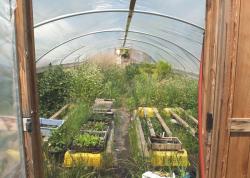 1hiyu_wine_garden_vegetables3