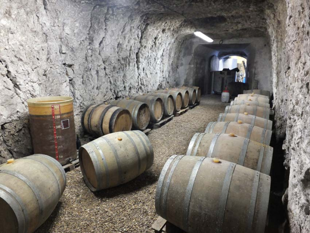 1anne_paillet_barrel_cellar