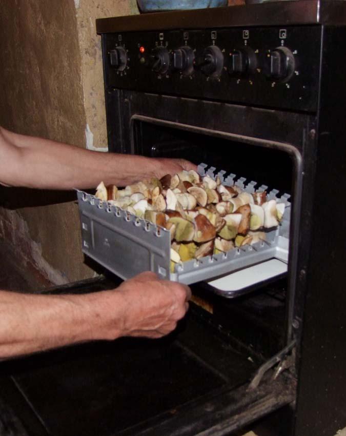 1mushrooms_slice_skewers_oven