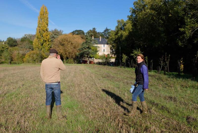 1carole_kohler_site_of_future_plantings