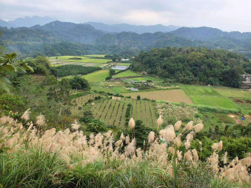 1ea_farm_view_from_farm