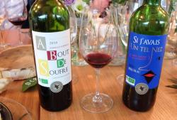 1news_vineam_wines