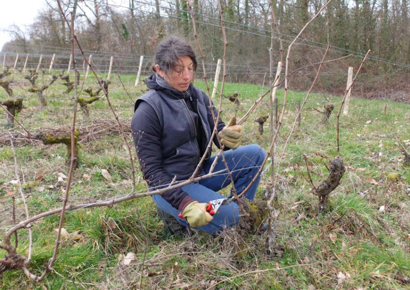 1patricia_pruning