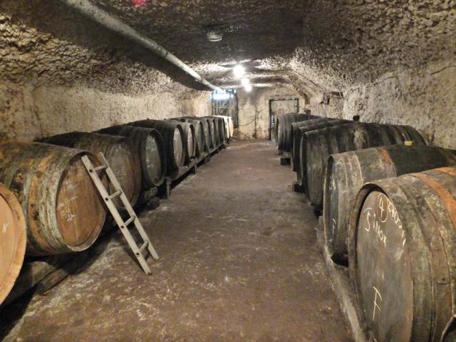 1regis_dansault_cellar_demi-muids