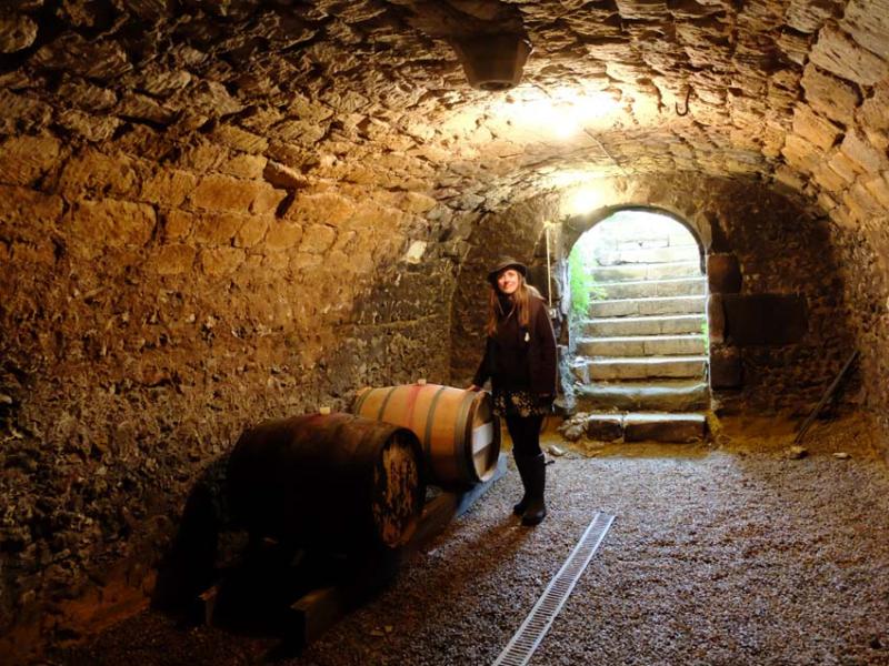 1marie_rocher_cellar