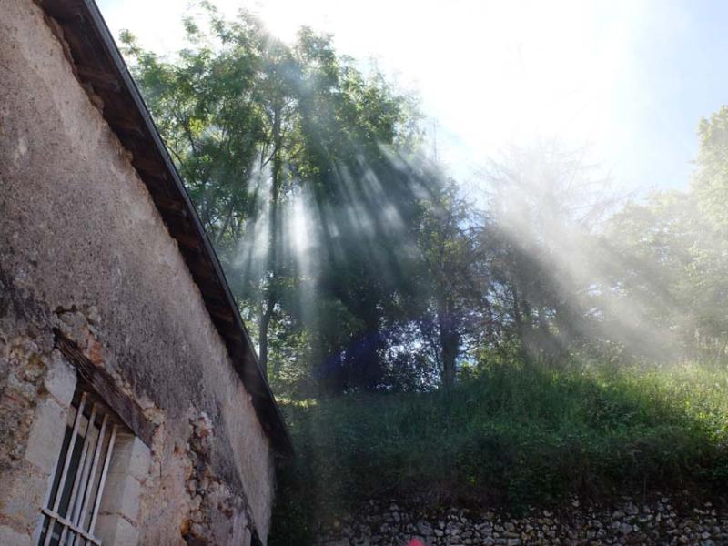 11maitresses_de_chai_morning_light