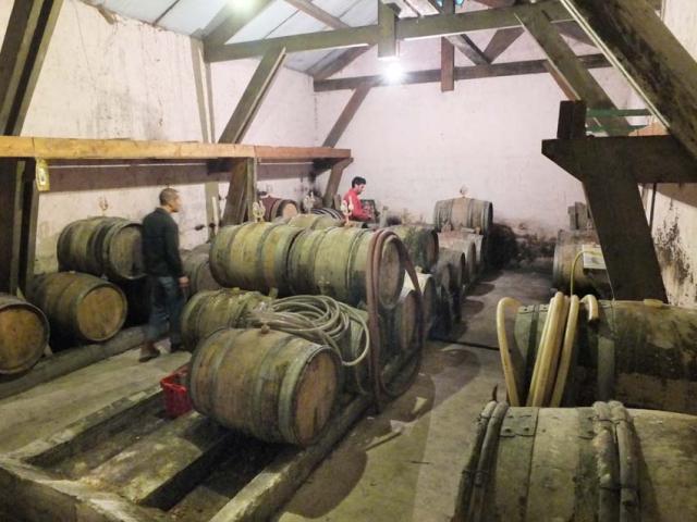1courtois_etienne_barrel_cellar1